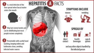 Clinical Manifestations of Hepatitis A Virus