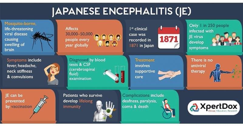 Japanese Encephalitis (JE) Virus