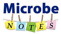Microbe Notes