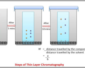 Procedure of Thin Layer Chromatography (TLC)