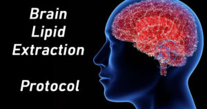 Brain Lipid Extraction Protocol