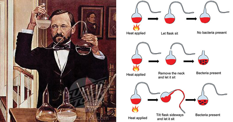 Louis Pasteur and his contributions
