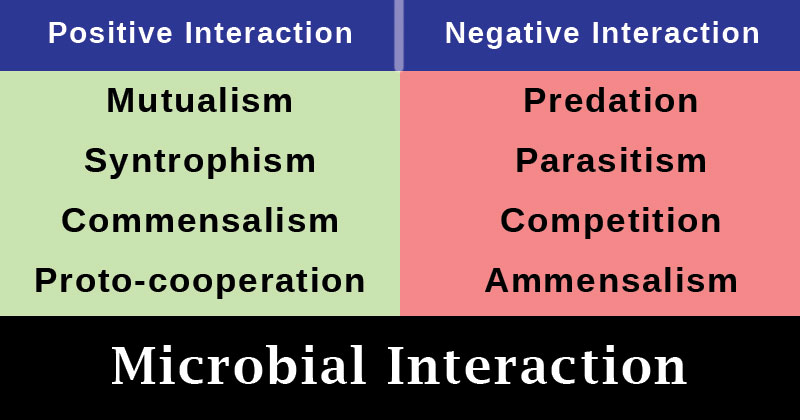 Microbial Interaction