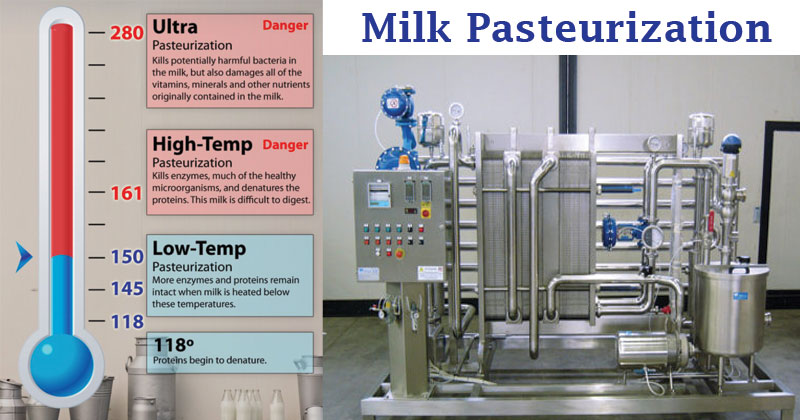 Milk Pasteurization- Methods, Steps, Significance