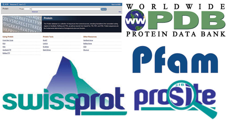 Protein Databases- Types andImportance