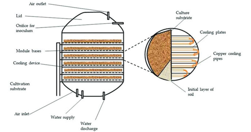 Schematic of solid state fermenter for conversion of lignocellulosic biomass to enzymes.