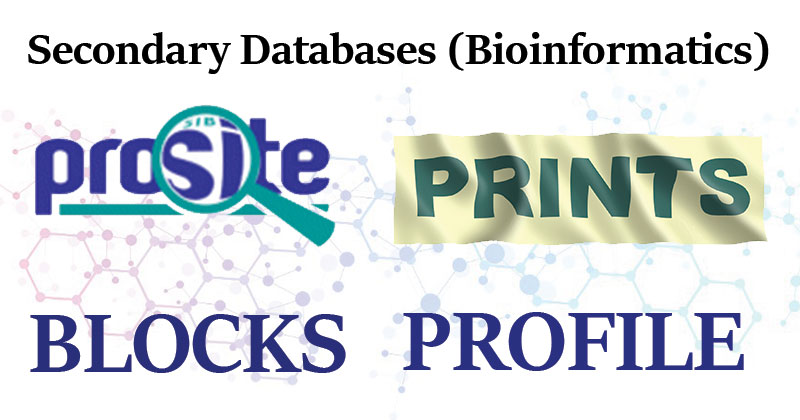 Secondary Databases