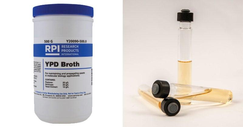 Peptone Yeast Extract Glucose Broth
