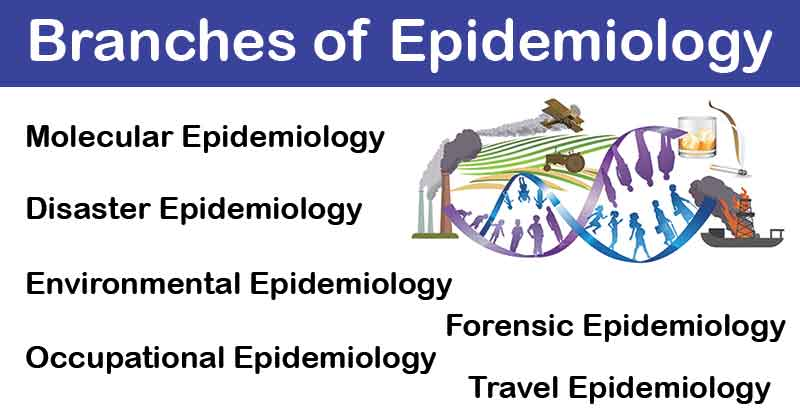 Branches of Epidemiology