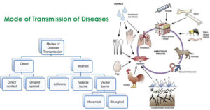 Mode of Transmission of Diseases