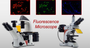 Fluorescence Microscope from LEAM Solution Inc