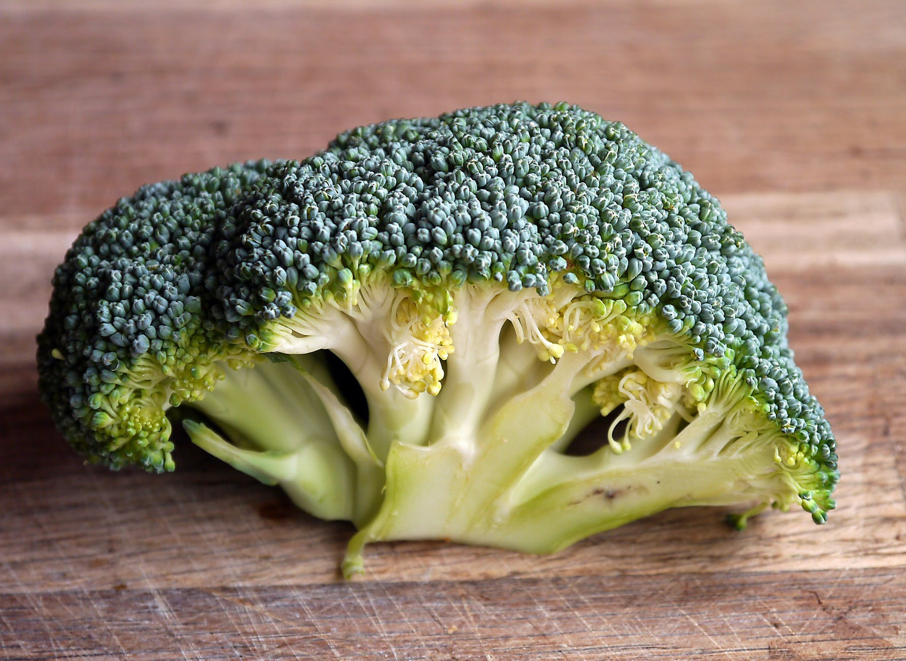 Broccoli as Immune Booster Food