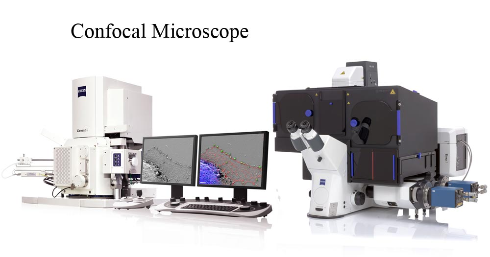 Zeiss Confocal Microscope
