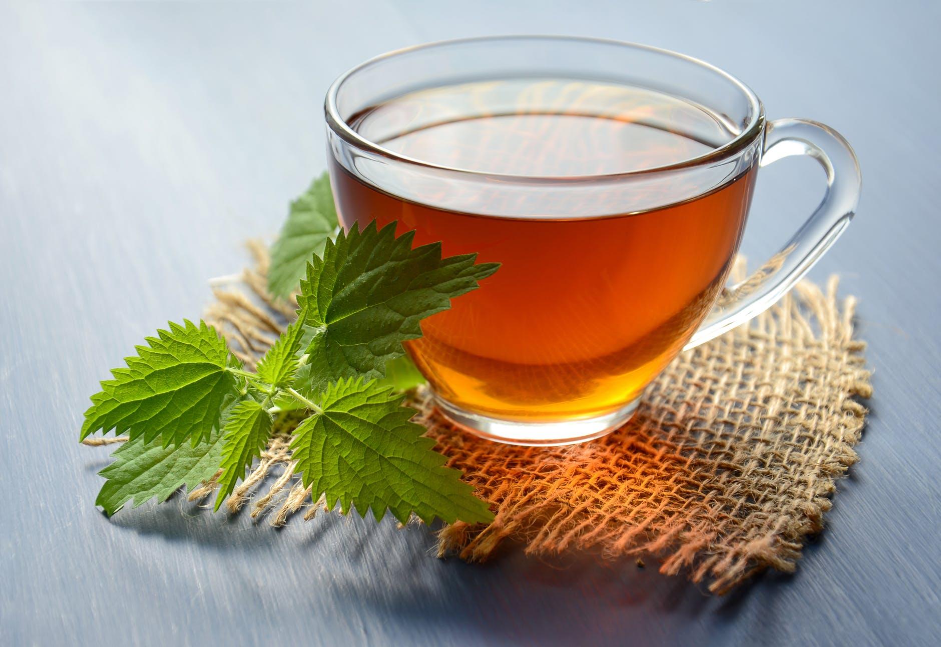Green Tea as Immune Booster Food