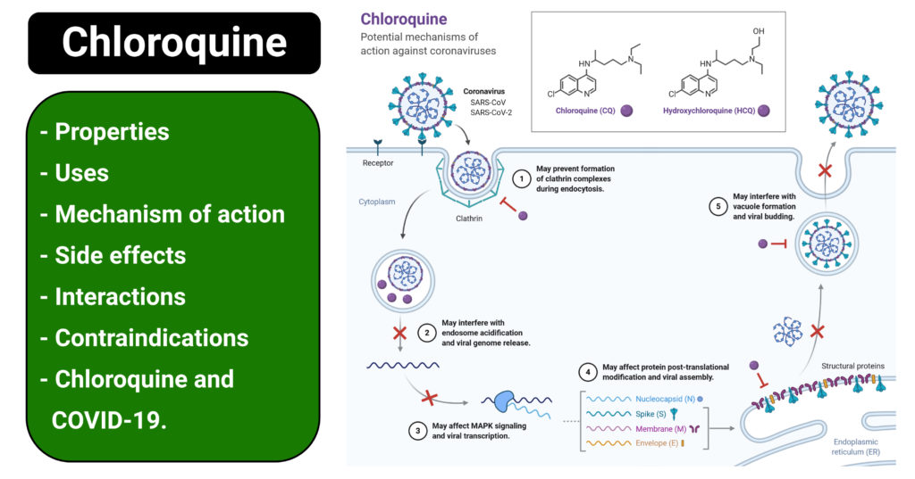 Chloroquine (Chloroquine Phosphate)