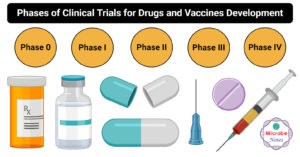 Phases of Clinical Trials for Drugs and Vaccine Development