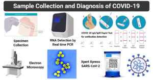 Sample collection and Diagnosis of COVID-19