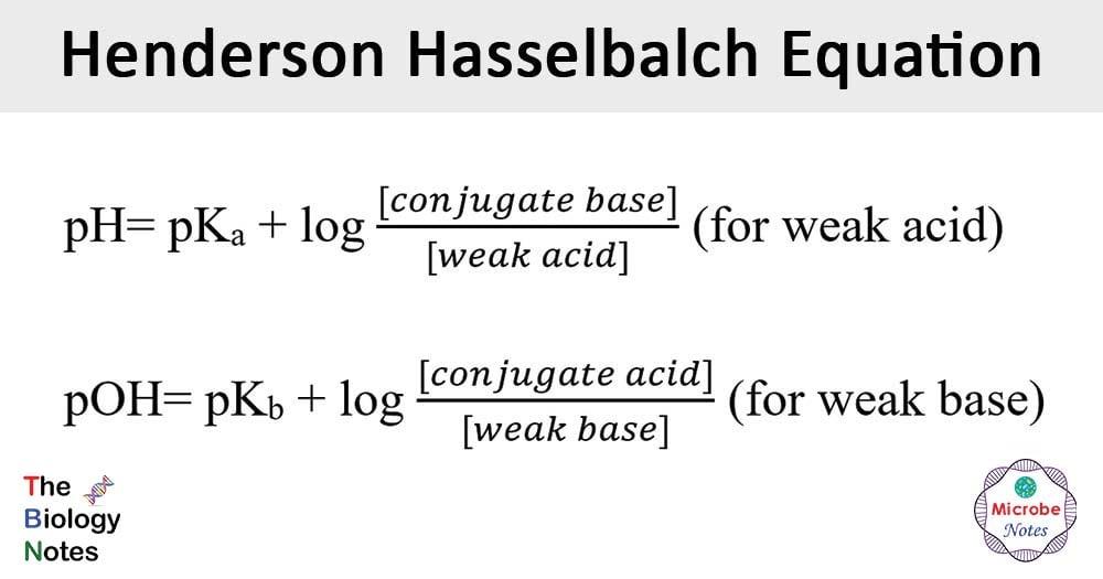 Henderson-Hasselbalch-Equation