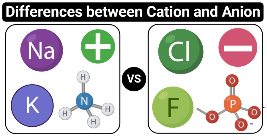 Differences between Cation and Anion (Cation vs Anion)