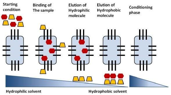 Reverse-phase chromatography