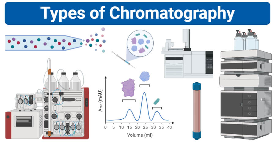 Types of Chromatography (Definition, Principle, Steps, Uses)