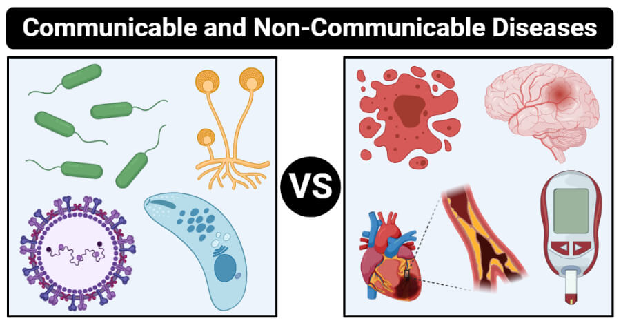communicable and non-communicable diseases differences