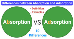 differences between Absorption and Adsorption (Absorption vs Adsorption)