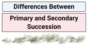 Differences Between Primary and Secondary Succession