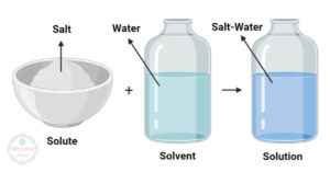 Differences between Solute and Solvent (Solute vs Solvent)