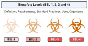 Biosafety Levels