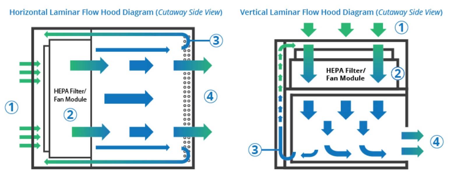 Principle Working of Laminar flow hood