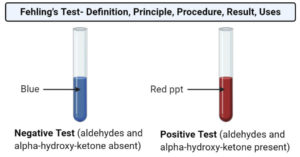 Fehling's Test- Definition, Principle, Procedure, Result, Uses