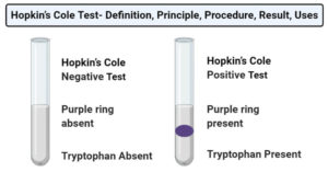 Hopkin's Cole Test