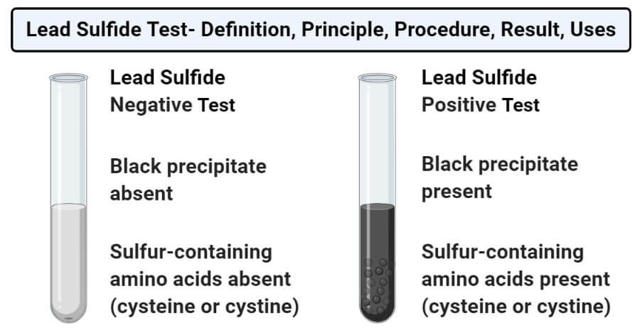 Lead sulfide test (Lead acetate test)