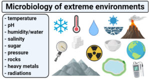Microbiology of extreme environments