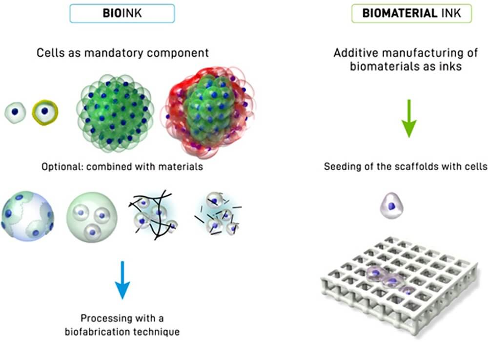 Bioinks