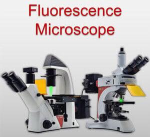 Fluorescence-Microscope-Ad-Image