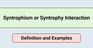 Syntrophism or Syntrophy Interaction