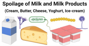 Spoilage of Milk and Milk Products (Cream, Butter, Cheese, Yoghurt, Ice-cream)