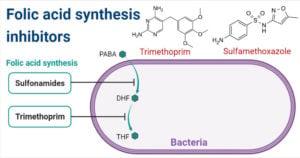 Folic acid synthesis inhibitors