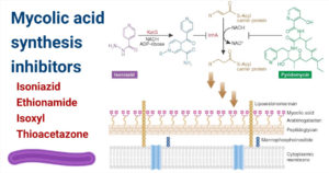 Mycolic acid biosynthesis inhibitors