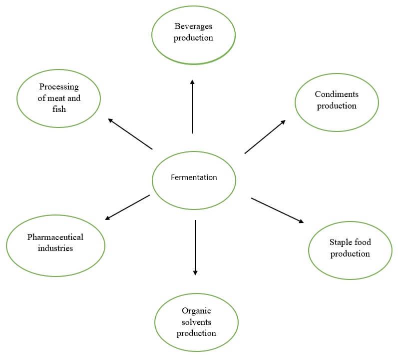 Application of fermentation