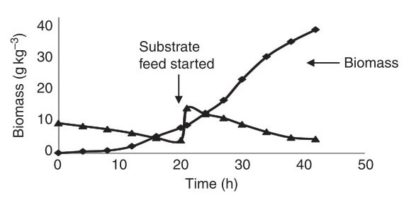 Characteristic plot for typical substrate-limited fed-batch fermentation
